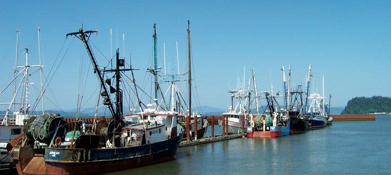 Fishing fleet at the East Basin